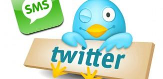 Tweet-powered digital governance