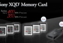 Sony XQD and SD cards