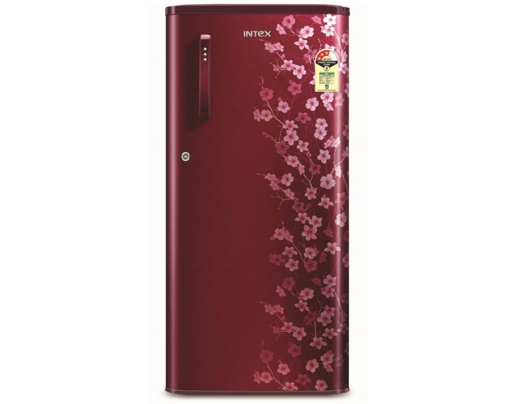 Intex DC Refrigerator- RW203WB - 180L - Blossom Wine